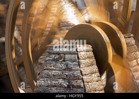 Tender green sprouts on the ancient waterwheel in Lijiang old town, Yunnan, China. - Stock Photo