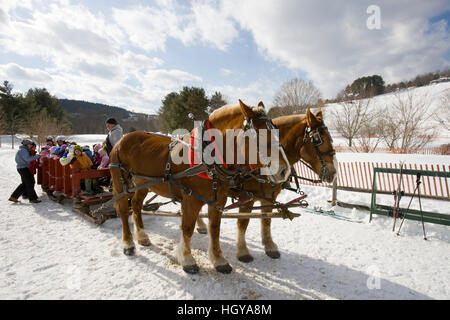 A horse drawn sleigh carries skiers in Quechee, Vermont. - Stock Photo