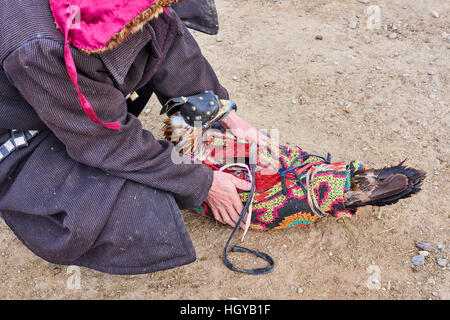Mongolia, Bayan Olgii, kazakh eagle hunter, Eagle hunting, golden eagle - Stock Photo