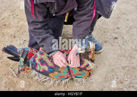 Mongolia, Bayan Olgii, kazakh eagle hunter, Eagle hunting, golden eagle - Stock Photo