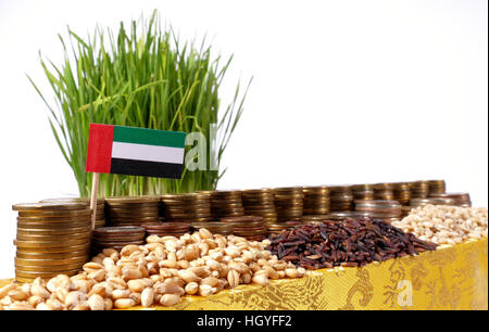 United Arab Emirates flag waving with stack of money coins and piles of wheat and rice seeds - Stock Photo