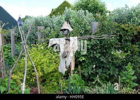 A scarecrow in a garden.