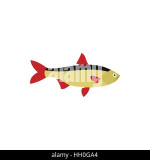 Rudd fish icon in flat style - Stock Photo