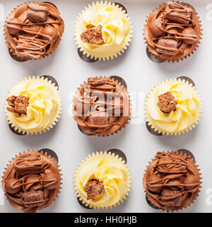 Home made vanilla and chocolate cupcakes on a white background - Stock Photo
