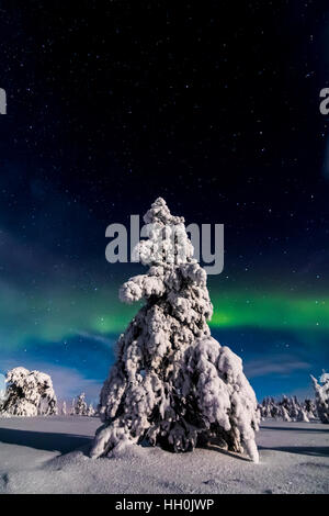 Northern lights in Riisitunturi national park, Finland - Stock Photo