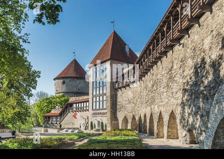 The city wall. In the foreground is the Maiden Tower, the tower Kiek in de Koek viewable in the background, Tallinn, - Stock Photo