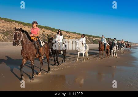 Equestrian tourism on the beach, Donana Natural Park, Matalascanas, Huelva province, Region of Andalusia, Spain, - Stock Photo