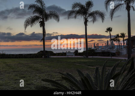 Sunset at Coronado, San Diego.Taken whilst on holiday in California in January of this beautiful palm tree sunset. - Stock Photo