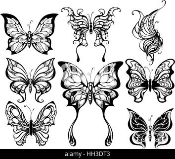 artistically painted silhouettes of exotic butterflies on a white background. - Stock Photo