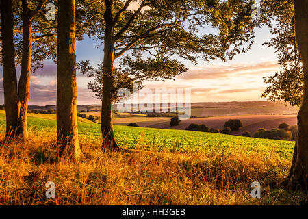 Sunset over the North Wessex Downs in Wiltshire. - Stock Photo