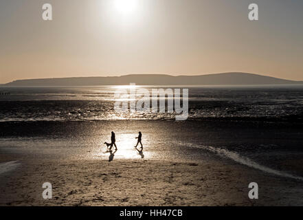 Dog walkers on the beach on a sunny winter day in Weston-super-Mare, England - Stock Photo