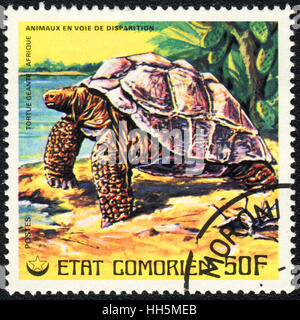 A postage stamp printed in Comoros shows  a African giant Turtle, series, circa 1980 - Stock Photo