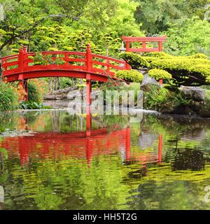 Red Japanese Garden Bridge red bridge in japanese garden stock photo, royalty free image
