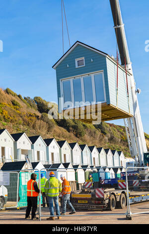 Boscombe, Bournemouth, Dorset, UK. 18th Jan, 2017. Lovely sunny weather and blue skies for lifting the last of the - Stock Photo