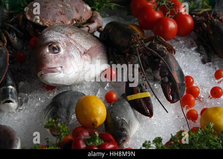 Sea food on a market. Sea food on ice. - Stock Photo