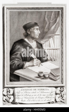 Antonio de Nebrija,1441 – 1522, aka Antonio de Lebrija, Elio Antonio de Lebrija, Antonius Nebrissensis, and Antonio - Stock Photo