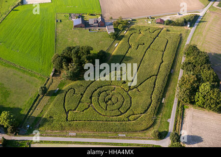 Corn maze in the shape of a cartoon character peasantry Brackenberg Besten, Schermbeck, Ruhr area, North Rhine-Westphalia, - Stock Photo