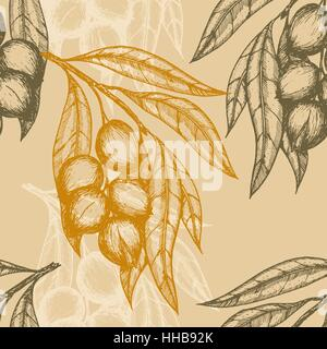 Seamless pattern based on engraving illustration of macadamia branches with nuts and leaves. Vector illustration - Stock Photo