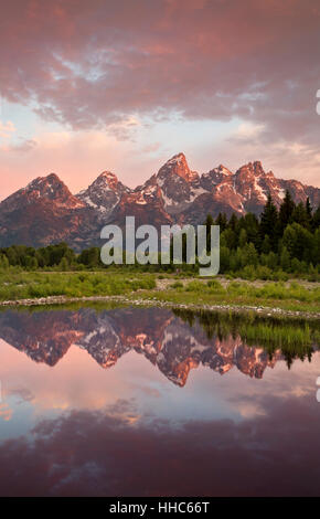WY02065-00...WYOMING - The Tetons reflecting in a beaver pond on the Snake River at sunrise in Grand Teton National - Stock Photo