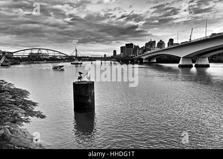 Brisbane city CBD across the river between Captain Cook's bridge and pedestrian bridge at sunrise in black-white. - Stock Photo