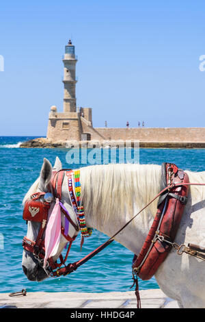 Focus on a horse on the waterfront promenade with the Egyptian lighthouse in the background, Chania, Crete, Greece - Stock Photo