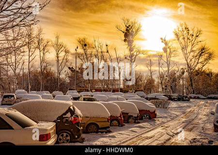 Cars covered by snow on the urban street. - Stock Photo