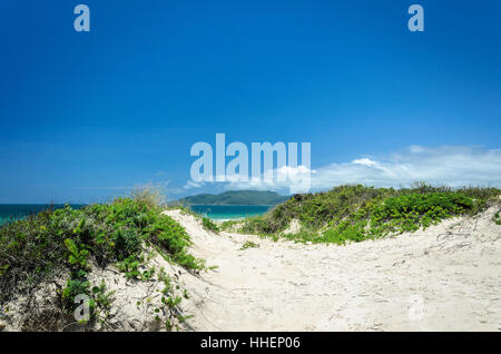 Sand path to the blue ocean in the background on a beautiful summer day. Beach of Santa Catarina, Brazil. - Stock Photo