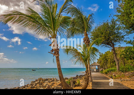 Beach Hut On The beach Guadeloupe West Indies - Stock Photo