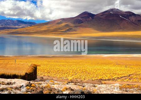 Frozen Lake Miscanti in the highlands of Chile near San Pedro de Atacama - Stock Photo