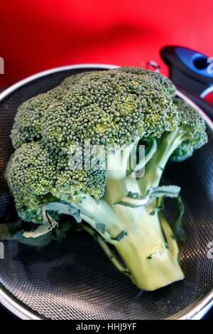 Fresh Broccoli before being cooked - Stock Photo