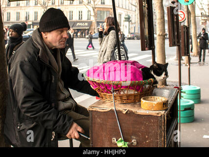 Man with a cat begging for money in Paris - Stock Photo