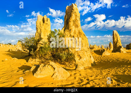 Limestone pillars in the Pinnacles Desert in the Nambung National Park in Western Australia - Stock Photo