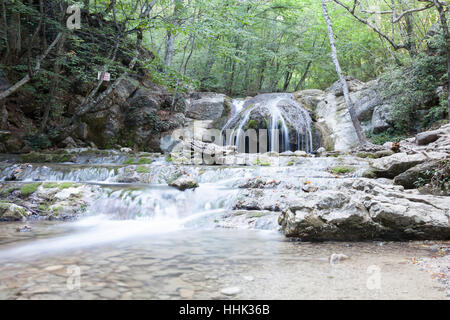 beautiful forest falls in mountains in the summer afternoon, the Crimea, Russia - Stock Photo