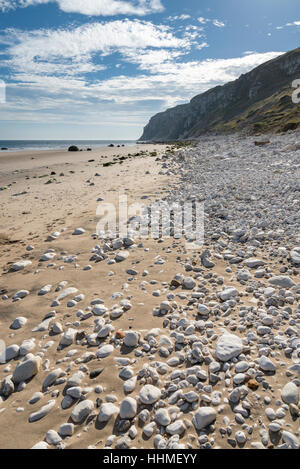 Chalk pebbles on the beach at Speeton sands looking towards Buckton cliffs, Filey Bay, North yorkshire, England. - Stock Photo