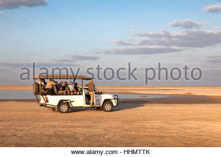 Safari Jeep with tourists on salt lake, Nata Bird Sanctuary, Botswana - Stock Photo