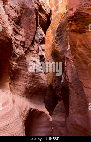 Slot canyon walls of Wire Pass and abstract patterns in Navajo sandstone. Paria Canyon-Vermilion Cliffs Wilderness - Stock Photo