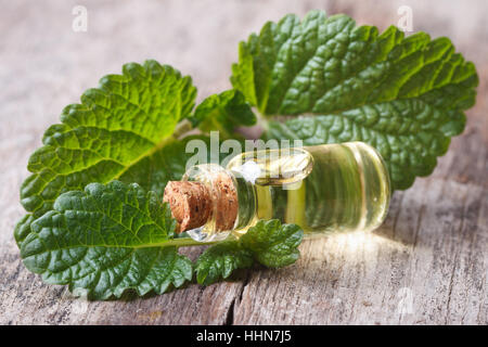 lemon balm leaves close up with a bottle of oil on an old wooden table. horizontal - Stock Photo