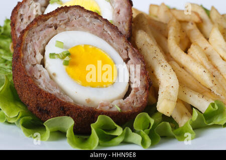 by scotch egg and fried potatoes macro on a plate on the table. horizontal - Stock Photo