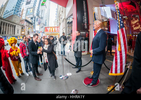 New York, USA. 20th Jan, 2017. Tourists pose for photographs with a wax figure of President Donald Trump in front - Stock Photo