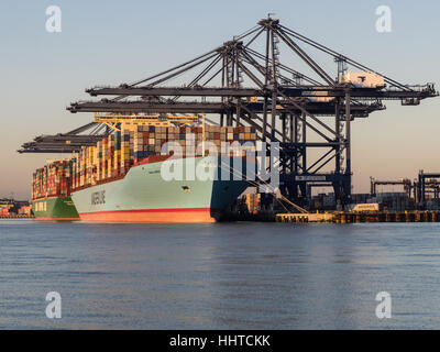 Port of Felixstowe International Trade UK - Ships being loaded and unloaded at Felixstowe, UK's largest container - Stock Photo