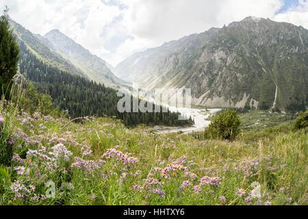 Ala archa - national park, Kyrgyzstan - Stock Photo