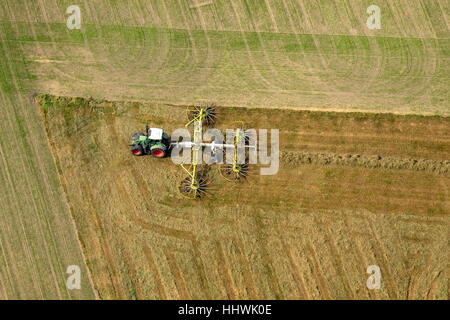 Tractor with hay rakes, agriculture, fields, Ruhr district, North Rhine-Westphalia, Germany - Stock Photo