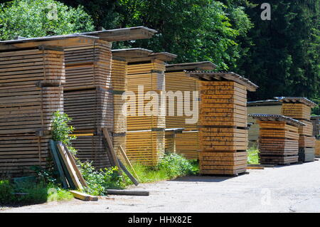 Firewood Stacked · Wood, Black Forest, Raw Material, Lasting, Sawmill,  Furniture, Tree,