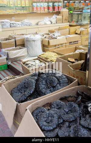 Dried fish in a traditional market in Hong Kong - Stock Photo