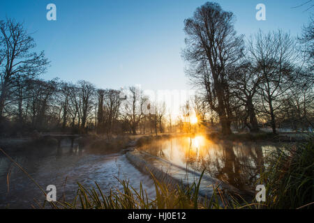 Morden Hall Park, London, UK. 21st January, 2017. Mist rising from a weir on the river Wandle as the sun rises on - Stock Photo