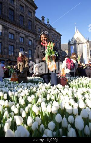 Amsterdam, Netherlands. 21st Jan, 2017. A woman holding tulips poses for photos during the 2017 Dutch National Tulip - Stock Photo