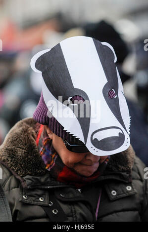 London, UK.  26 January 2017.  Activists take part in a 'Save the Badger' protest, marching from Leicester Square - Stock Photo