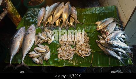 Lagos Island Restaurant Dalston
