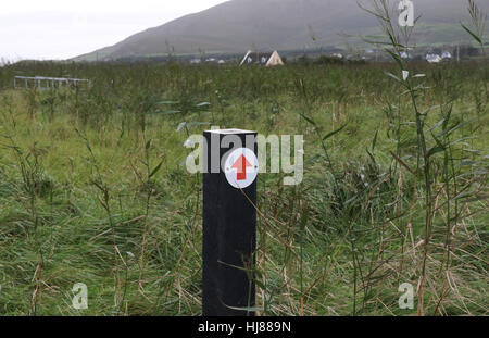 Wooden direction marker for walking route at Ballinskelligs Priory, Ballinskelligs, County Kerry, Ireland. - Stock Photo