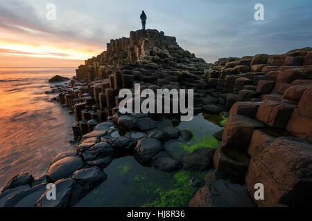 Woman standing on Giants Causeway at sunset, County antrim, Northern Ireland, UK - Stock Photo